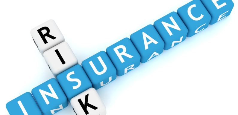 Self-Employed? There Are Loads of Insurance coverage Choices for You