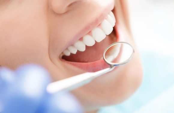What Do Particular person Dental Insurance coverage Plans Cowl?
