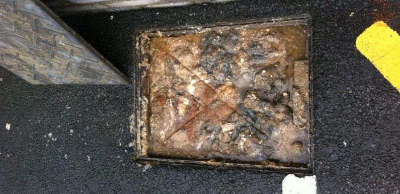 When to call for blocked drains?